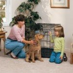 Midwest LIFE STAGES Front Door Crate