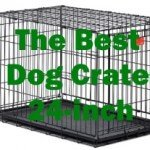 Top 5 Best Dog Crate 24-inch 2016 Review
