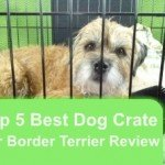 Top 5 Best Dog Crate For Border Terrier in 2016 Review