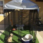 lucky-dog-uptown-welded-wire-dog-kennel-with-free-cover_5
