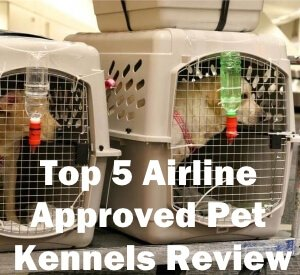 Top 5 Airline Approved Pet Kennels Review
