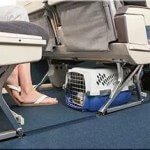 top-5-airline-approved-pet-kennels-review4