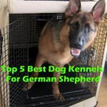 Top 5 Best Dog Kennels and Cages For German Shepherd in 2016 Review