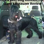 Top 5 Best Dog Kennels and Cages For Giant Schnauzer in 2016 Review
