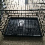 Midwest-iCrate-Pet-Crate10