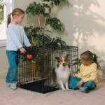 Midwest Life Stages Collapsible Metal Dog Cage Review