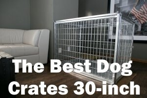 Top 5 Best Dog Crates 30-inch 2019 Review