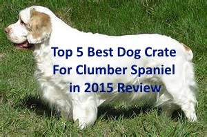 Top 5 Best Dog Crates For Clumber Spaniel in 2019 Review