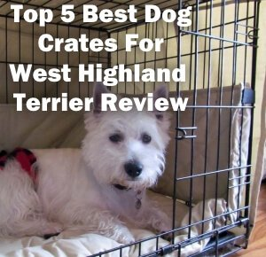 Top 5 Best Dog Crates For West Highland Terrier in 2020 Review