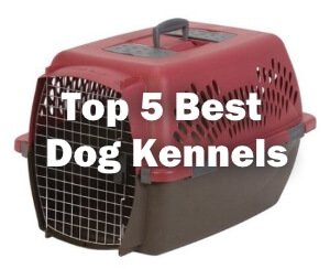 Top 5 Best Dog Kennels 2017 Review
