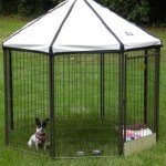 advantek-pet-gazebo-modular-outdoor-dog-kennel_2