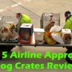 Top 5 Airline Approved Dog Crates 2016 Review
