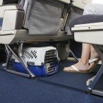 top-5-airline-approved-pet-kennels-review7