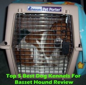 Top 5 Best Dog Kennels For Basset Hound in 2018 Review