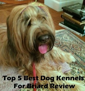 Top 5 Best Dog Kennels and Cages For Briard in 2020 Review