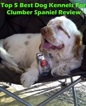 Top 5 Best Dog Kennels For Clumber Spaniel in 2019 Review