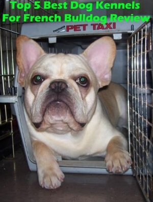 Top 5 Best Dog Kennels For French Bulldog in 2018 Review