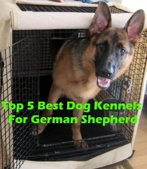 Top 5 Best Dog Kennels and Cages For German Shepherd in 2018 Review
