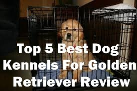 Top 5 Best Dog Kennels and Cages For Golden Retriever in 2018 Review