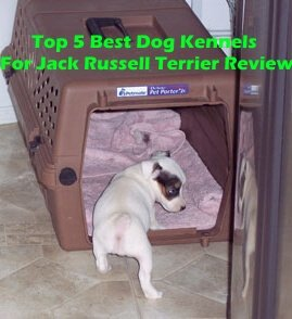 Top 5 Best Dog Kennels For Jack Russell Terrier in 2018 Review