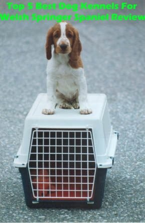Top 5 Best Dog Kennels For Welsh Springer Spaniel in 2020 Review