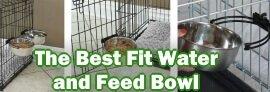 The Best Fit Water and Feed Bowl