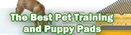 The Best Pet Training and Puppy Pads