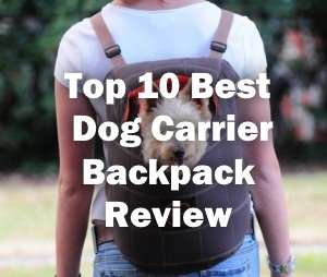 Top 10 Best Dog Carrier Backpack